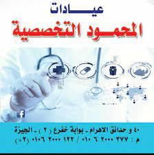 Al-Mahmoud El-Teby Clinics